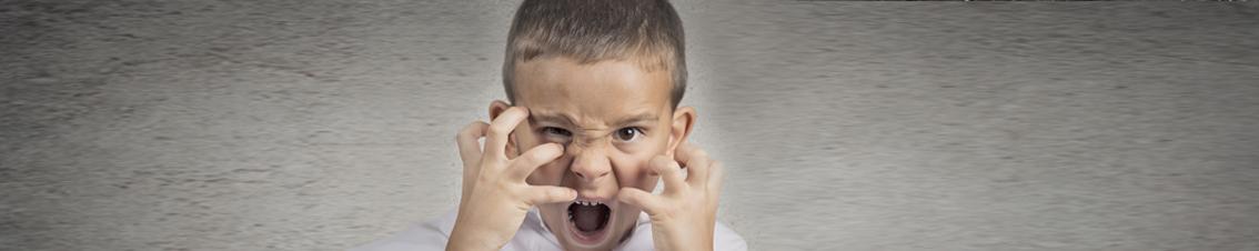agressief gedrag bij mensen met een verstandelijke beperking